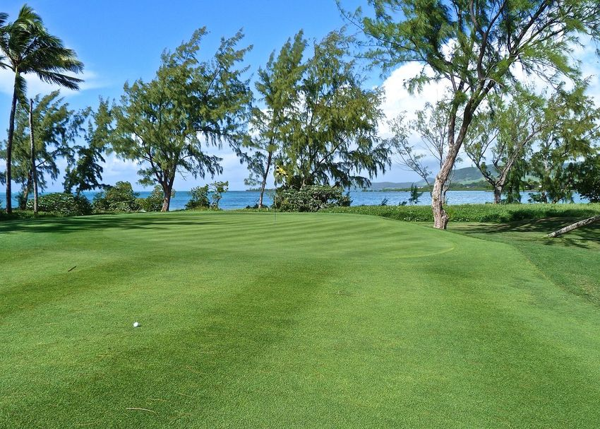 Amazing View Beauty In Nature Blue Golfball Golfcourse Golfing Grass Green Growth Landscape Landscapes With WhiteWall Lifestyles Mauritius Nature Ocean Scenics Sunlight Taking Photos The Great Outdoors - 2016 EyeEm Awards The Great Outdoors With Adobe Tranquil Scene Travel Travel Destinations Wineandmore Île Aux Cerfs