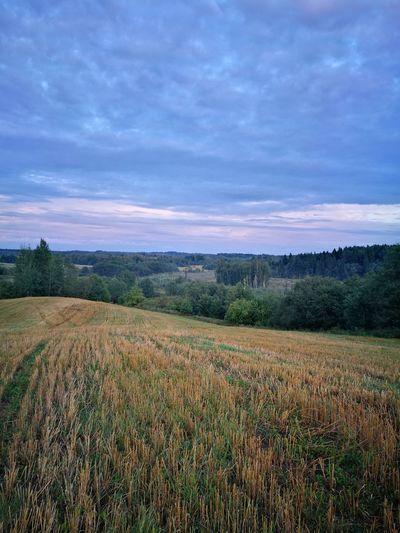 HuaweiP9 пейзаж