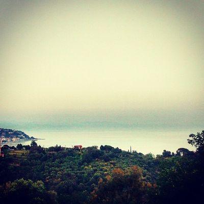 Home Celleligure Varazze Genova soffuso love nature green sea lovethis italy italia wood
