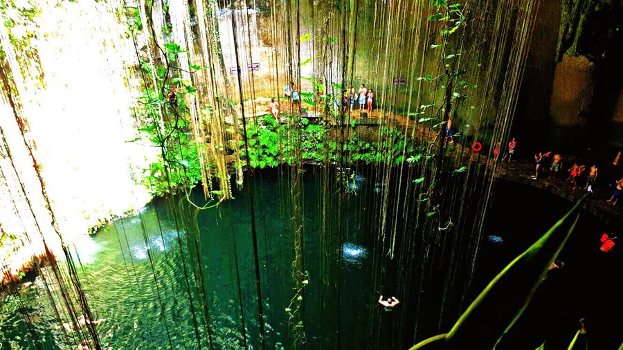 Nature Water Outdoors Reflection Day Nature Freshness Cenote Mexico Yúcatan Green Green Color