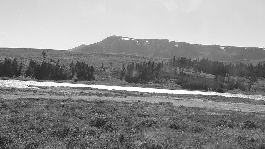 A open field