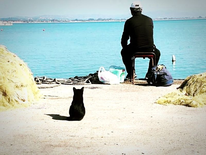 The cat and the fisherman. Sea Only Men Beach Adult People Nature Portrait Water Nature GREECE ♥♥ Greecesummer Fishermanslife Fisherman's Friend Cats 🐱