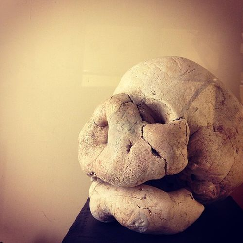 Skull Bones Webstapic Instalife Reggioemilia LifeLessOrdinary Meshpics Reggionarra Museicivici Monsterlife Abnorm