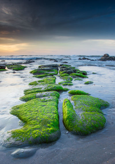 Mossy Rock Mossy Stone Mossy Beach sunset #sun #clouds #skylovers #sky #nature #beautifulinnature #naturalbeauty photography landscape Sunrise N Sunsets Worldwide  Sun_collection, Sky_collection, Cloudporn, Skyporn