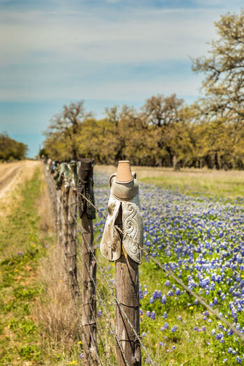 Cowboy boots on a fence, texas hill country