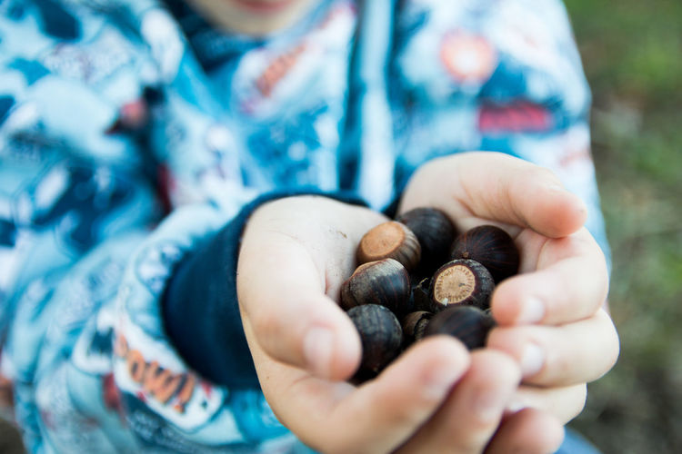 Midsection of boy holding chestnuts