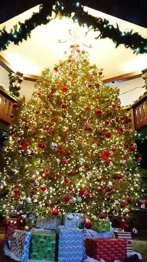 El Tovar Hotel Grand Canyon Cute Christmas Tree Trip Photo Hotel U.S.
