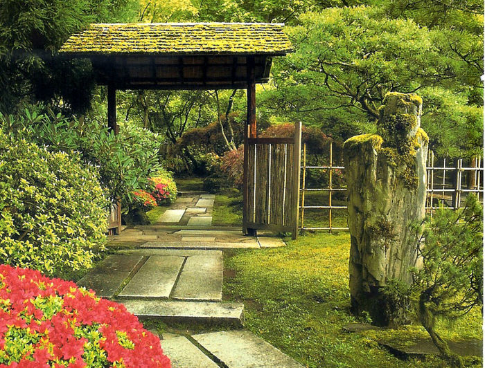 Day Entry Gate Green Color Growth Japanese Garden Nature No People Pathway