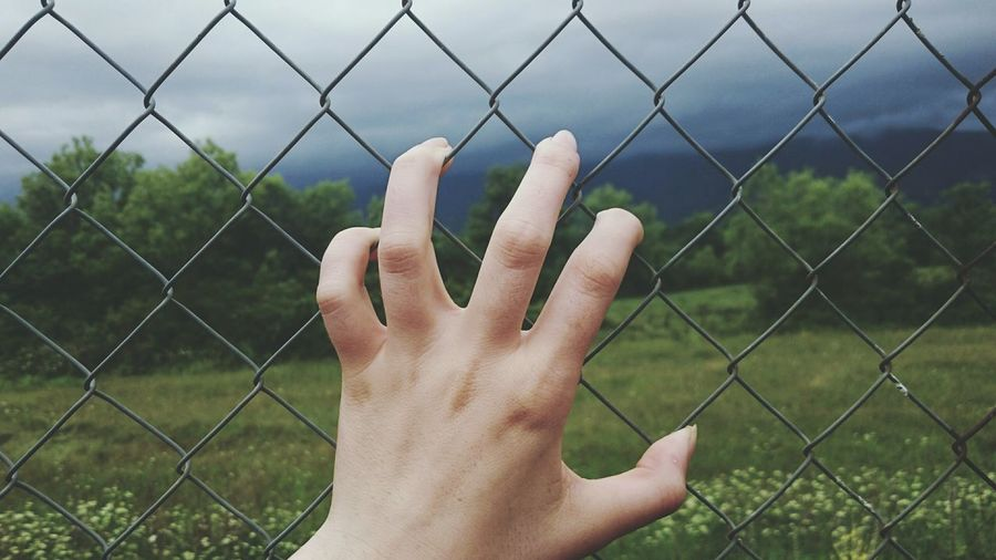 Hand Gripping Metal Net Out Of Reach Both Sides Light And Shadow Taking Photos Up Close Feeling Creative Open Edits EyeEm Best Shots Cloudy Rainy Day The Great Outdoors Before The Storm Out There Nature Plants Forest Seeking Peace