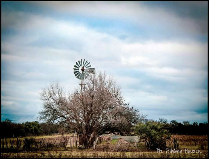Tranquil Scene Green Color EyeEm Nature Lover Windmill Cielo Y Nubes  Invierno Rural Scene Escena Rural Molinos De Viento Molino Campo Gate No People Nature Photography Nature Casual Argentina Calden Outdoors Heaven Birds Tree Sky Cloud - Sky Landscape Plant Life Tranquility Tranquil Scene Countryside Wind Turbine