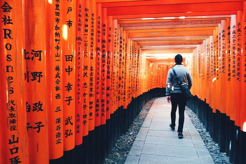 Torii Gate Tunnel At Fushimi Inari-taisha Shrine Torii Tunnel Vintage Looks Japan Walk One Person Tourist Gates Tunnel Kyoto Architecture Men Spirituality EyeEm Selects EyeEm Best Shots EyeEmBestPics EyeEmNewHere