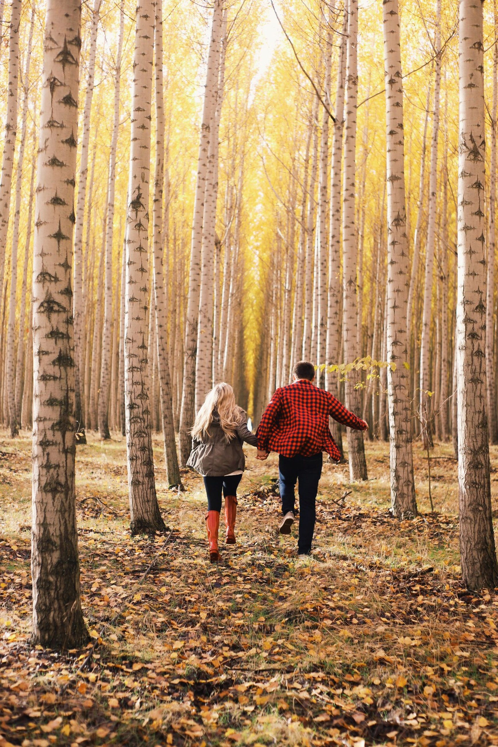 two people, full length, nature, walking, men, outdoors, togetherness, forest, warm clothing, adult, people, bonding, women, rear view, tree, sunset, winter, real people, adults only, beauty in nature, day