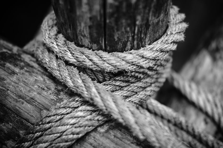 """""""Connected"""" Rope Blackandwhite Blackandwhite Photography Blackandwhitephotography Black And White Black And White Photography EyeEm Best Shots - Black + White Wood - Material Knotted Wood Rough Close-up Tied Knot Tied Up"""