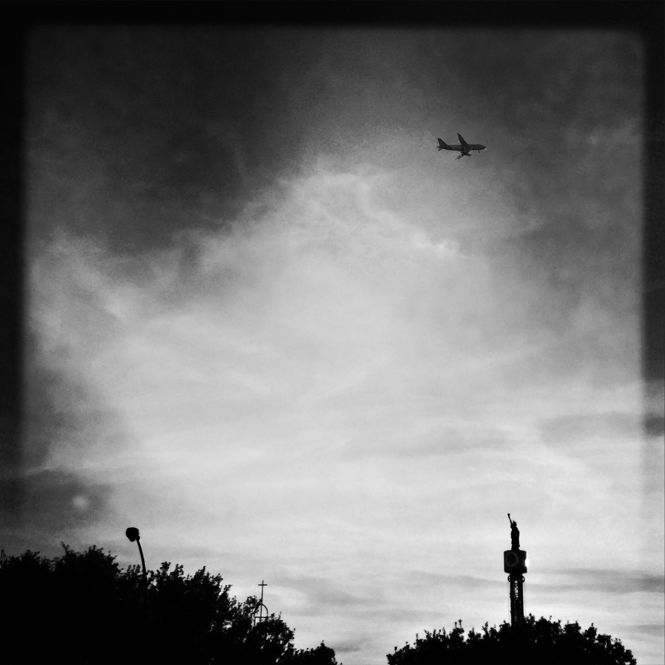 flying, sky, low angle view, silhouette, airplane, cloud - sky, no people, nature, outdoors, tree, day, air vehicle