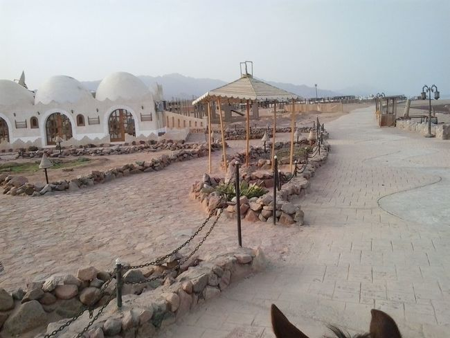 dahab egypt Egypt Dahab Travel Destinations Traveling Finding New Frontiers Tourism Nature No People Outdoors Sky Village Finding New Frontiers Sony Xperia Welcome Weekly. EyeEmNewHere
