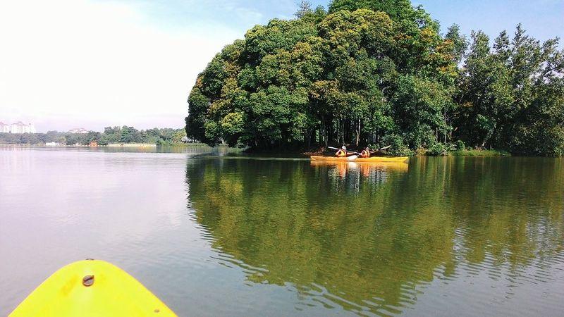 Kayaking Kayak Wetland Putrajaya