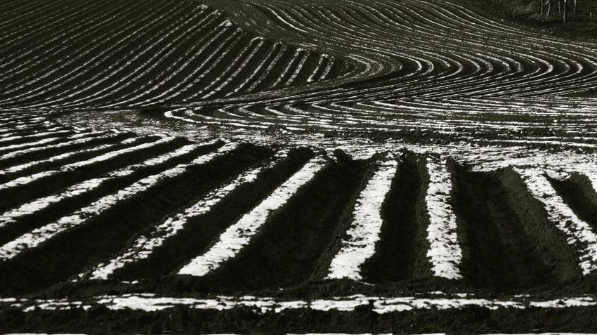 Agriculture Concentric Day Documentary Nature Photography Photography Taking Photos A Full Frame Furrows Landscape #Nature #photography Nature No People Outdoors Snow Covered Landscape