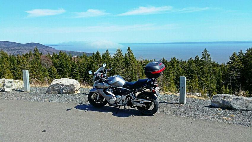 Suzuki Bandit Suzuki Bandit Motorcycle Motorbike