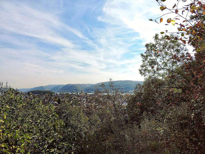 Rheintal bei
