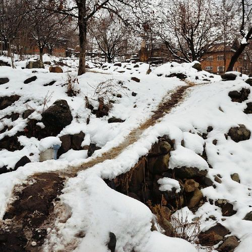 That Path To Home Kasheer Kashmir Pakistan Home SnowClad Winter Snow IExploreKashmir IPhotographKashmir ILoveKashmir KashmirTalks Iphotograph Iclick Itravel Revoshotsphotography Revoshots Rebel Revo Freedom Kpc
