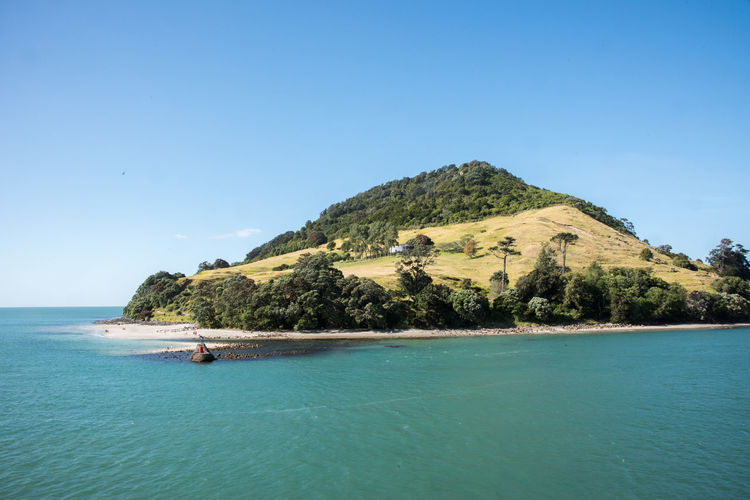 "Tauranga,North Island/New Zealand-December 16,2016: Mount Maunganui, tourists and the ""Tangaroa"" bronze sculpture by Frank Szirmay in Tauranga, New Zealand Maunganui Tangaroa Tauranga Tourists Travel Vacations Beach Bronze Statue Coast Copy Space Greenery Land Mount Mountain Nature New Zealand Pacific Ocean Sand Scenics - Nature Sculpture Sea Shore Turquoise Colored Water Waterfront"