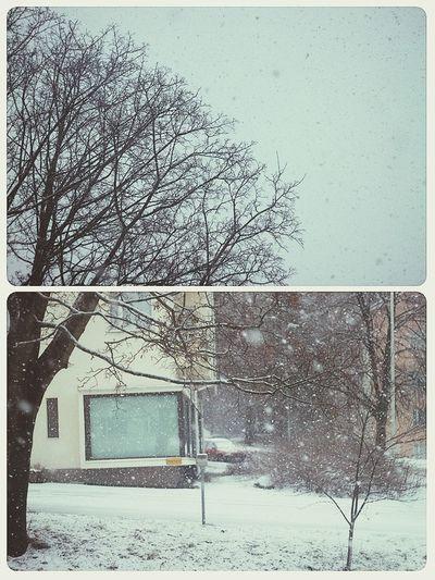 Snow. Snowing Snow Valkeakoski Finland