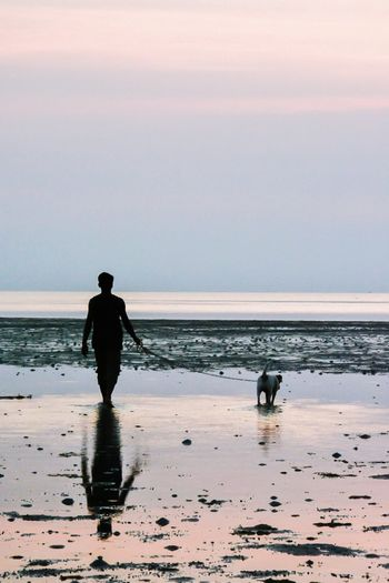 Rear view of man with dog walking at beach