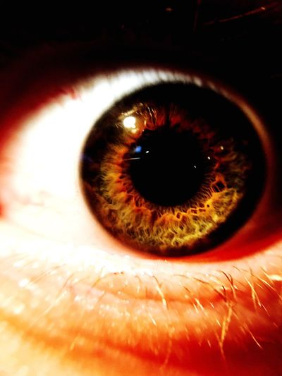 BYOPaper! Human Eye Eyesight Sensory Perception Human Body Part Eyeball Eyelash Real People Iris - Eye Close-up One Person Indoors  Day People EyeEmNewHere The Week On EyeEm