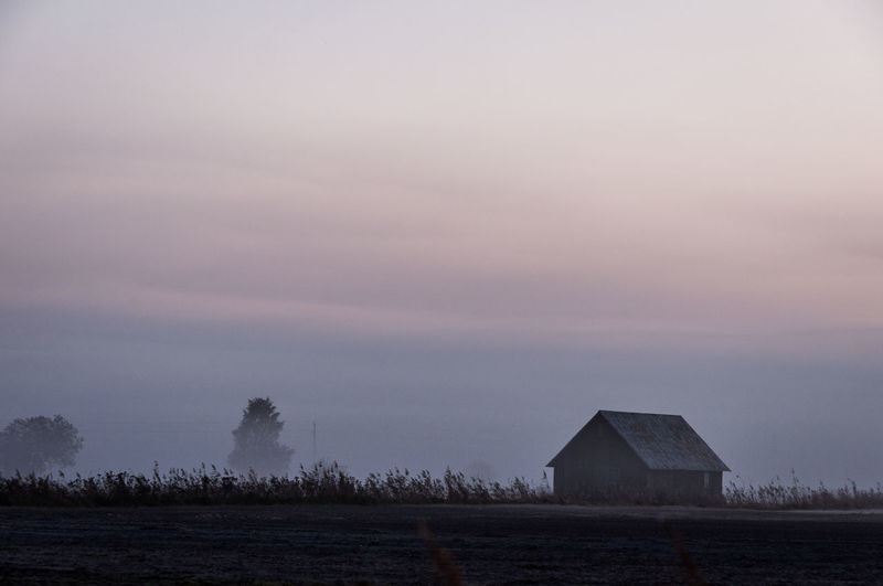 Autumn morning, Sweden Gotland, Sweden Sweden Cottage Fog Foggy Gotland Mist Open Landscape Outdoors Space For Copy Space For Text Space For Writing Sunrise