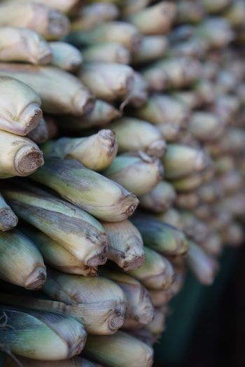 Lemon Grass Abundance Close-up Day Food Food And Drink For Sale Freshness Full Frame Healthy Eating Indoors  Large Group Of Objects Market Market Stall No People Nut Retail  Selective Focus Still Life Traditional Markets Vegetable Wellbeing