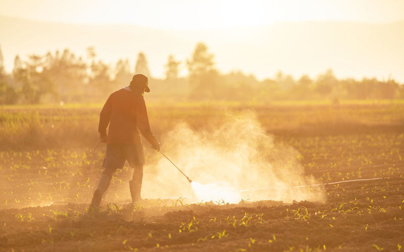 Farmer working in farm during sunset