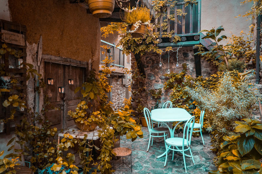 Traditional Gardens Cyprus Graphic Plant Wood Architecture Building Building Exterior Built Structure Chair Door Garden Kakopetria Leaves Nature Outdoors Plant Seat Staircase Table Town Traditional Village