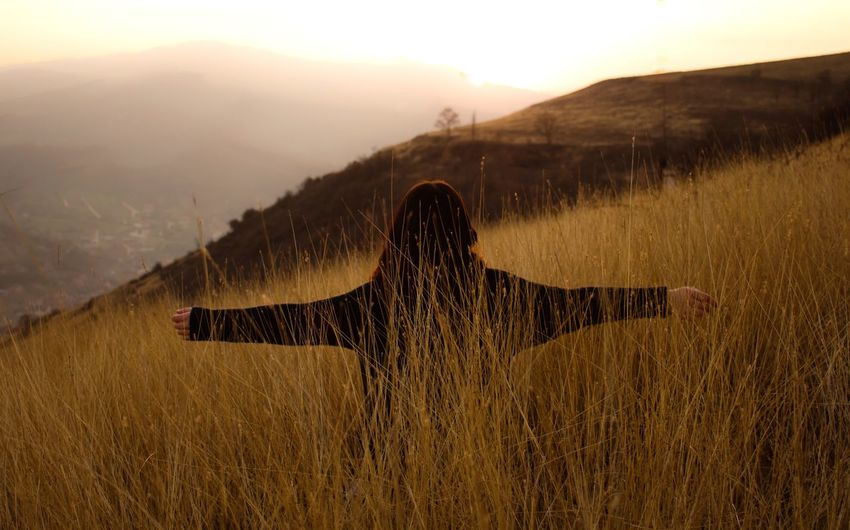 Rear view of woman with arms outstretched standing amidst plants on field during sunset