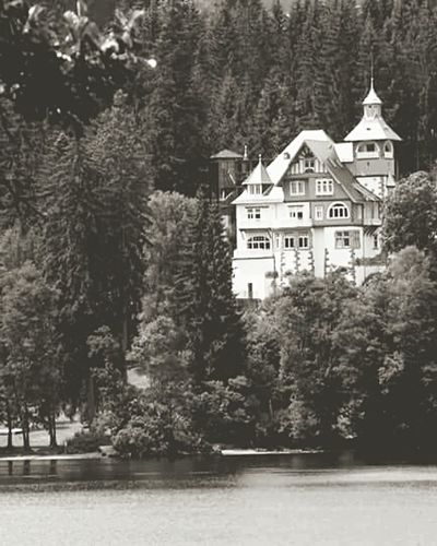 Titisee Manor On The River Vue Sur Le Lac Deutschland