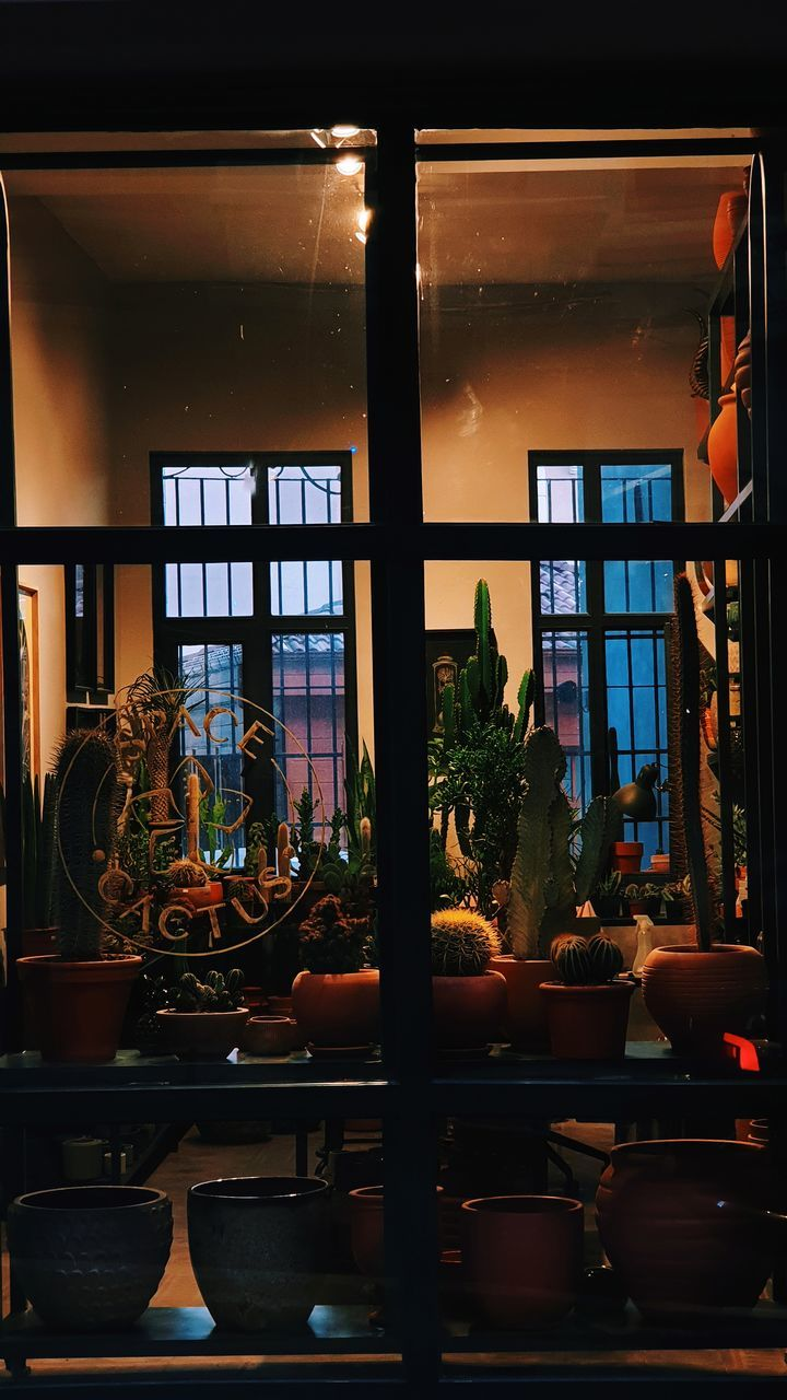 VIEW OF RESTAURANT GLASS WINDOW OF ILLUMINATED ROOM
