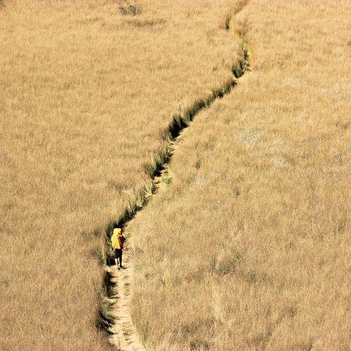 Hiking NEM Submissions EyeEm Nature Lover EyeEm Best Shots The Explorer - 2014 EyeEm Awards