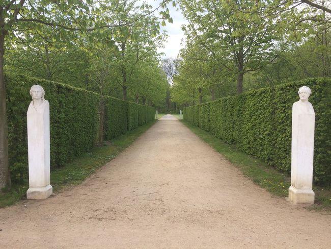 #Potsdam Day Female Likeness Grass Human Representation Male Likeness Men Nature Outdoors People Statue The Way Forward Tree