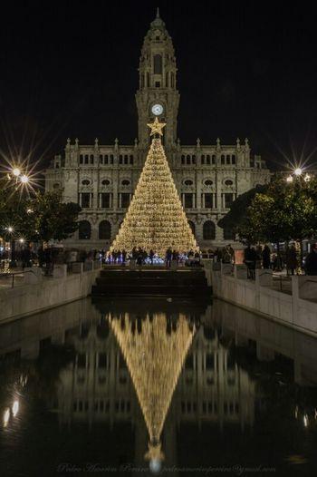 Merry Christmas Feliznatal Christmas Tree Christmas Lights Porto