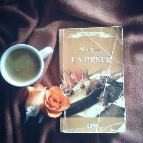 Relaxing Hi! Taking Photos Check This Out Enjoying Life Lapeste Algeria Reading Books ♥ Books