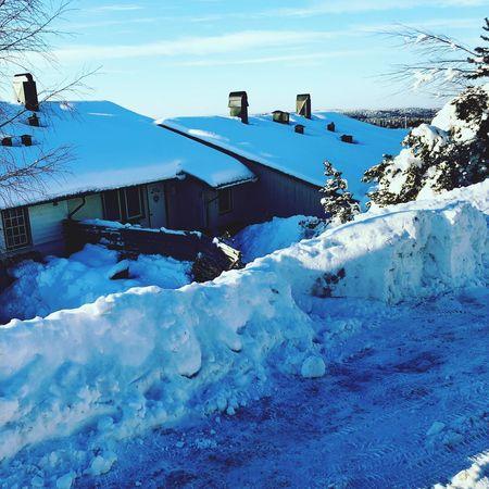 Vinter Cold Temperature Snow Winter Weather Built Structure Architecture Building Exterior Colour Your Horizn