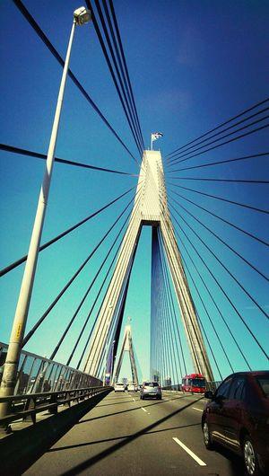 bridge Sightseeing View Taking Photos Driving Around