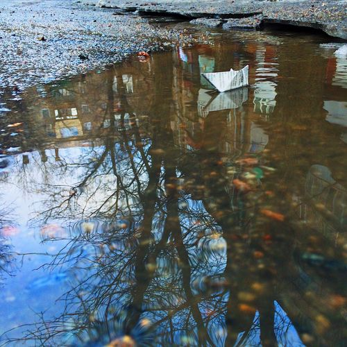 Reflection Water Nature No People Outdoors Day Floating On Water Beauty In Nature Puddle Iphonephotography IPhone Photography Iphone5s IPhone IPhoneography Snapseed Snapseed Editing  Snapseed Edit Snapseededit VSCO Cam Vscocam