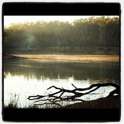 13: landscape #fmsphotoaday #photoadayoct .. from my files #cobram #murrayriver #camping #serenity #peaceful (not iPhone) Camping Peaceful Serenity Fmsphotoaday Photoadayoct Murrayriver Cobram