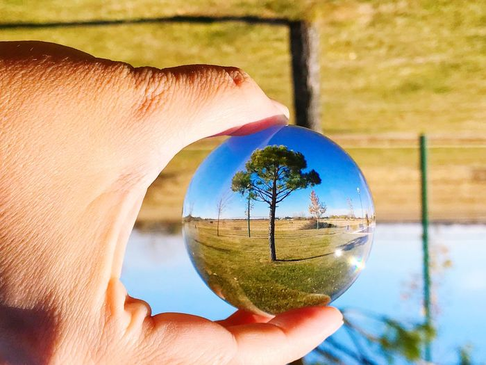 Close-up of hand holding crystal ball with reflection against trees