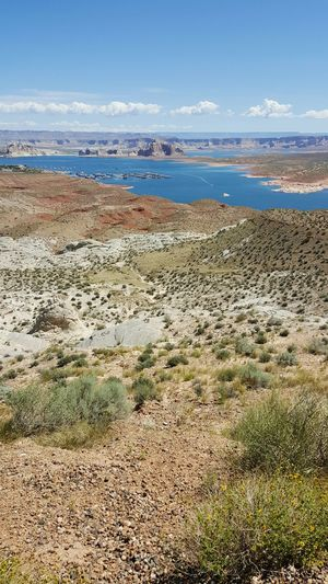 Scenics Vista View of Lake Powell Desert Lake Desert Landscape Arid Vast Nature Arizona Utah American Southwest Road Trip