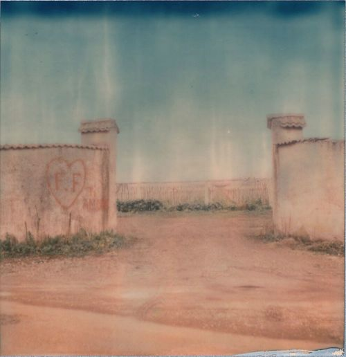 Polaroid Vintage Love Showcase: January Instantphoto Impossible Atmospheric Mood Romantic EyeEm Italy