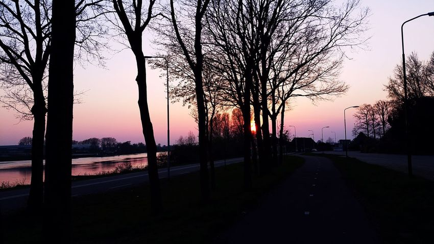 Spring Nature Thenetherlands Rijn Photography