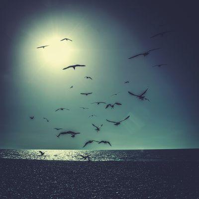 Mextures Sky Sea