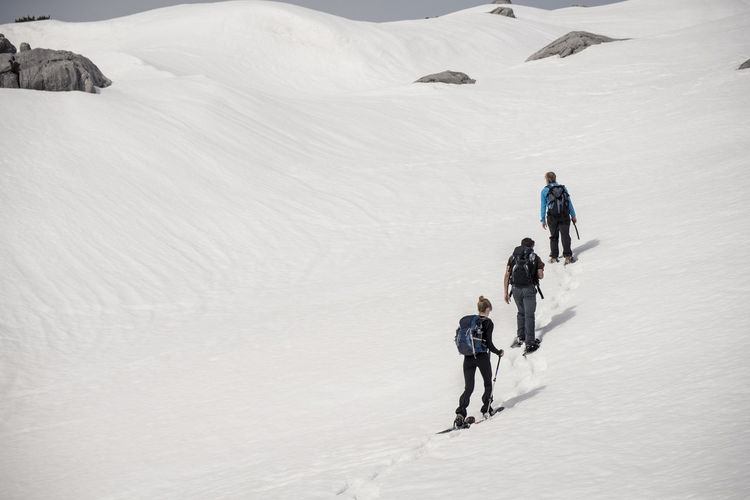 Rear View Of Trekkers On Snow