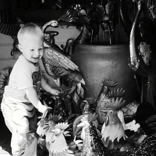 Chıcken Chickens Yardart Childhood Carousel Baby Toddler